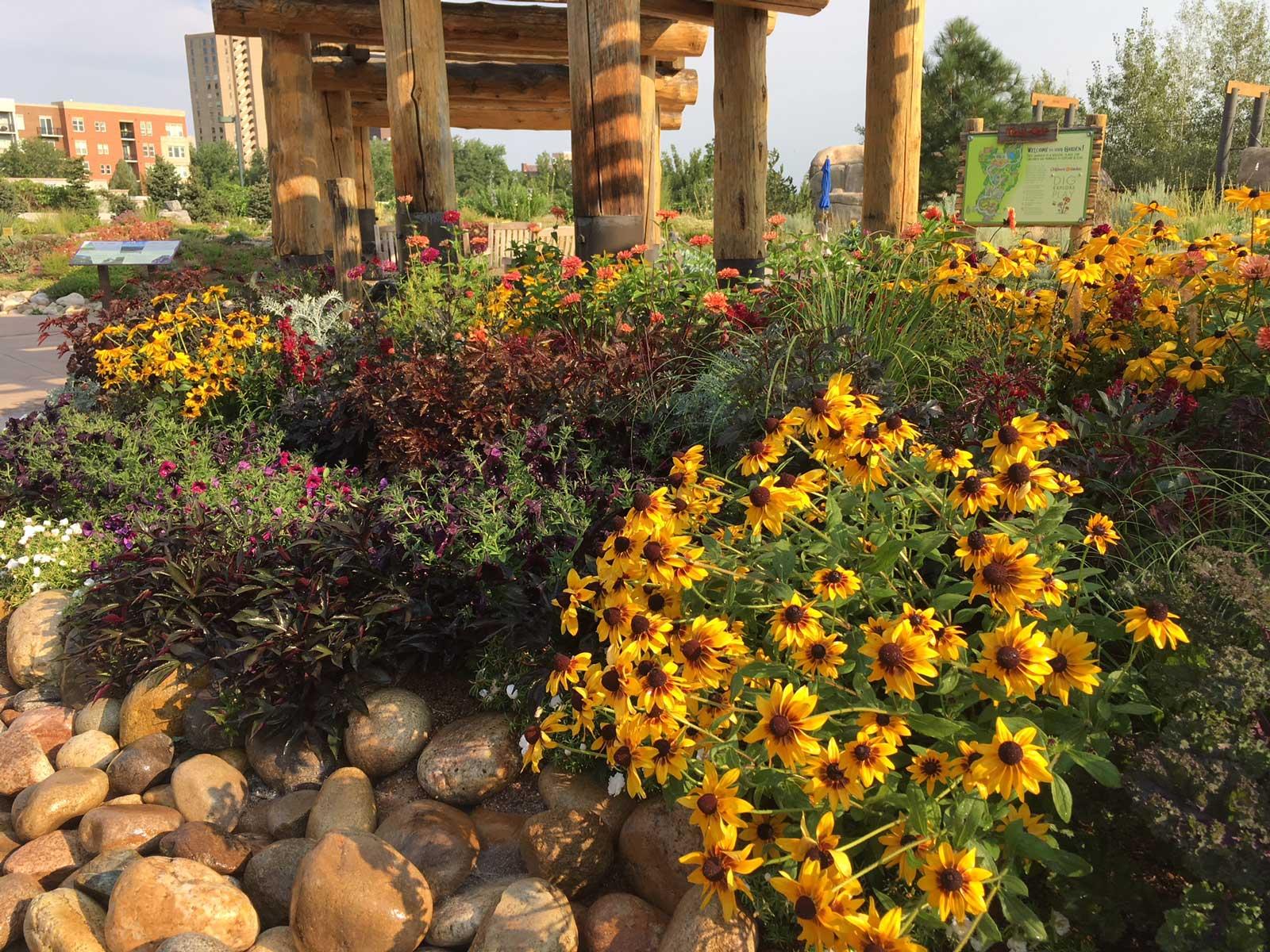 Green Roofs of Colorado - Andy Creath - Materials, Design ...